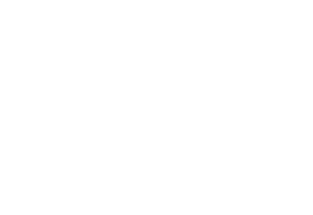 Altitude Payroll